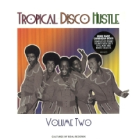 Various Artists-Tropical Disco Hustle2-web