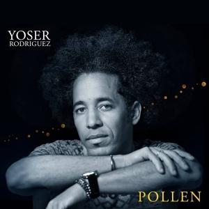 yoser-rodriguez-pollen-web